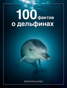 100 фактов о дельфинах