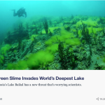 Green Slime Invades World's Deepest Lake