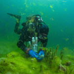Scientist takes samples of biofilm covering Baikal sponge