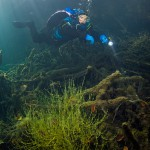 Diver  inspects the lakeshore