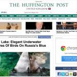 Swan Huffington Post